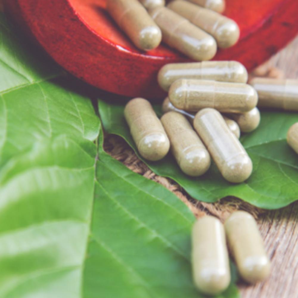 Plantas Medicinales Noáin